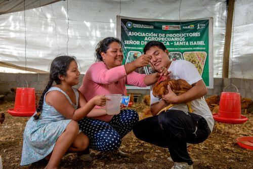 Jóvenes emprendedores del ámbito rural participarán en encuentro en Andahuaylas. ANDINA/Difusión