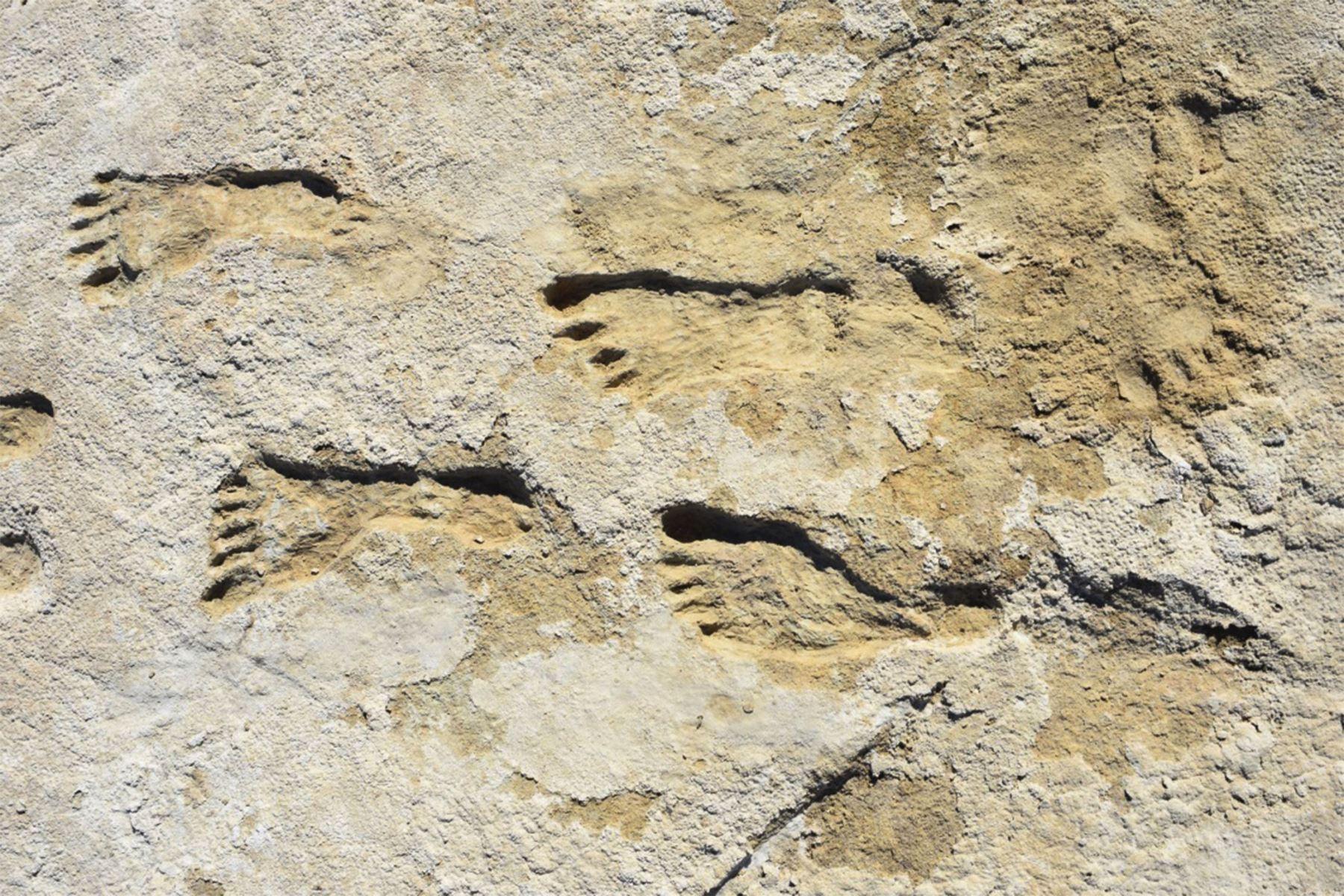 Fotografía cedida por el Parque Nacional White Sands, en Nuevo México, donde se muestran las huellas humanas que fueron descubiertas por primera vez por David Bustos. Foto: Efe.
