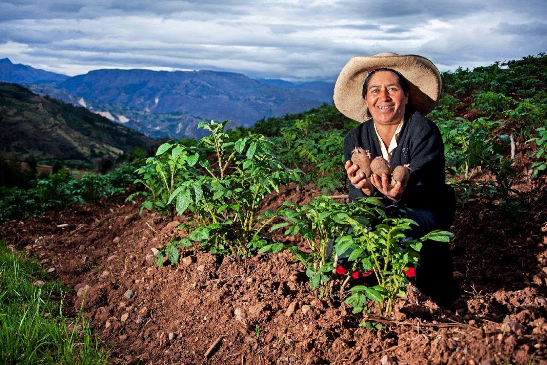 Segunda reforma agraria debe significar desarrollo integral del sector