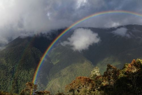 Parque Nacional Sierra del Divisor. Foto: Ministerio del Ambiente