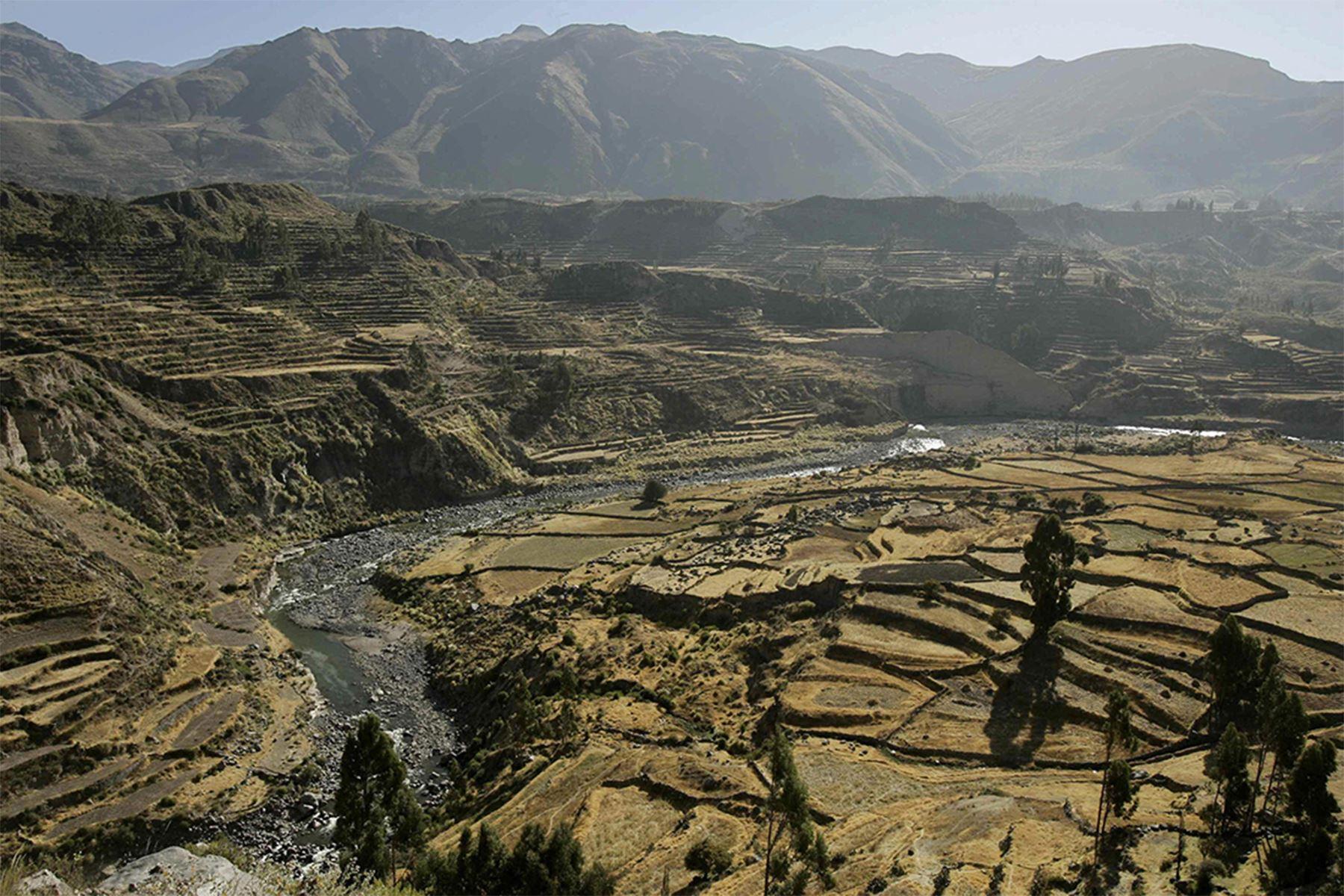 Cañón del Colca, ubicado en la provincia arequipeña de Caylloma, y considerado el segundo más profundo del planeta. Foto: EFE