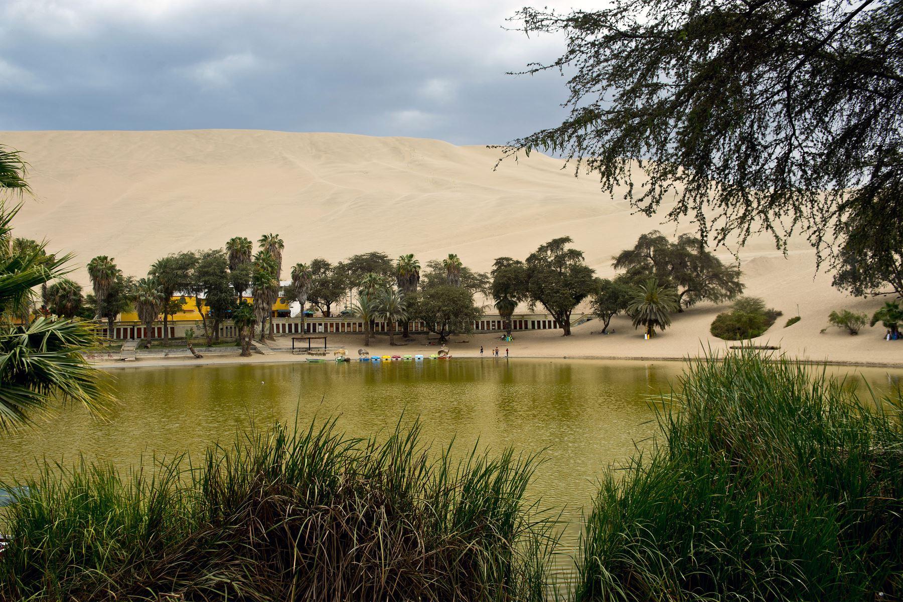 Huacachina es un destino turístico que se pueden divisar desde lo alto de las dunas.  Foto:AFP