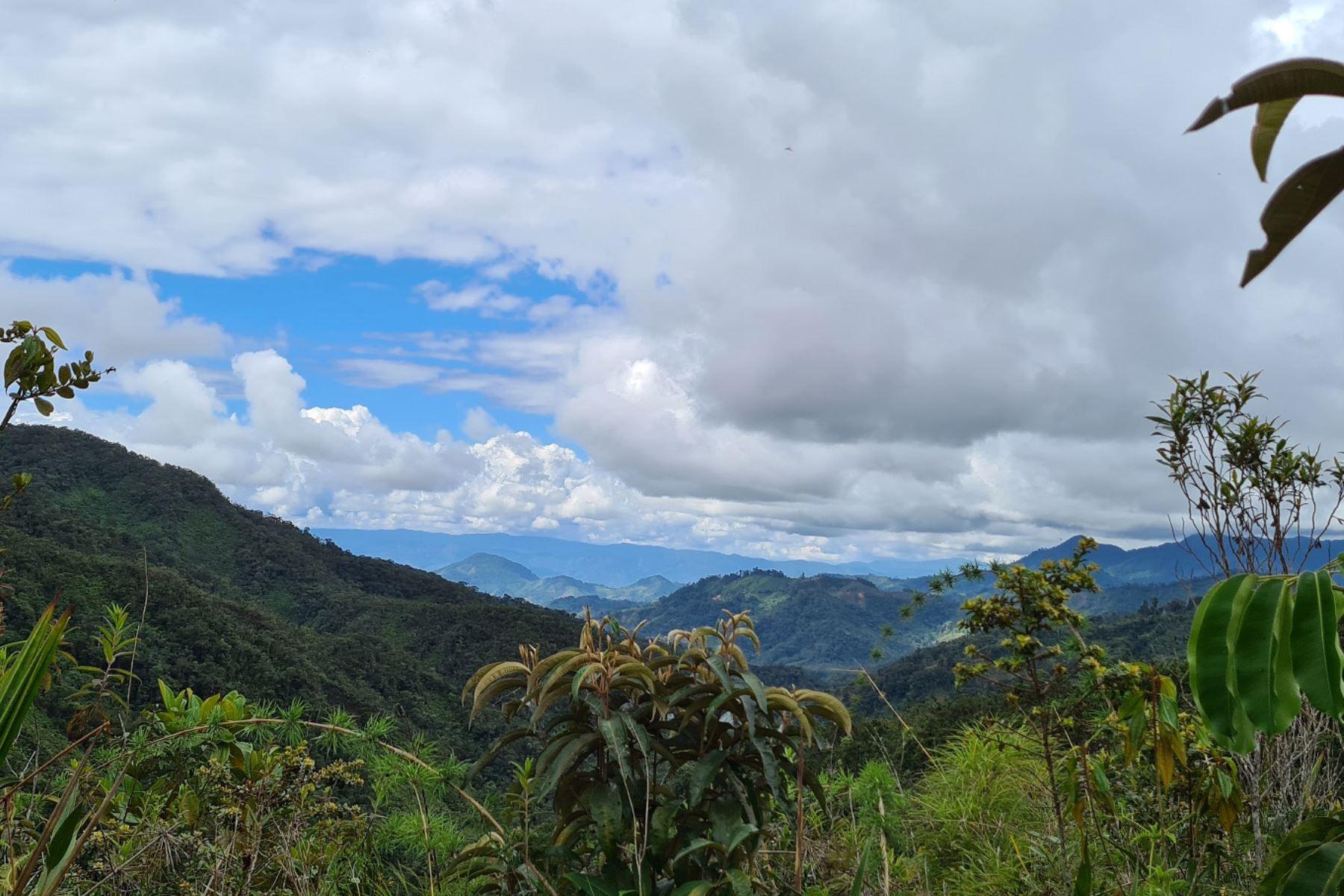 El paraje Capiro Llaylla, ubicado en el distrito de Llaylla, es la tercera área de conservación privada de la región Junín. Foto: ANDINA/Difusión