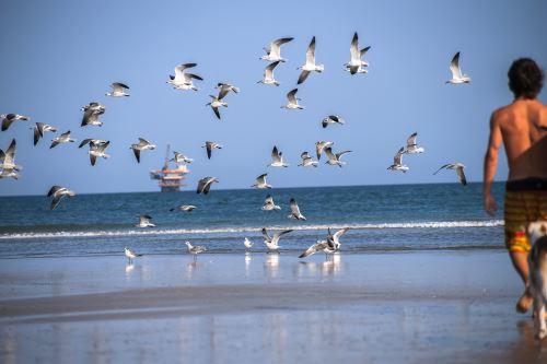 Playas del norte son los principales destinos turísticos que impulsan la recuperación del sector turismo