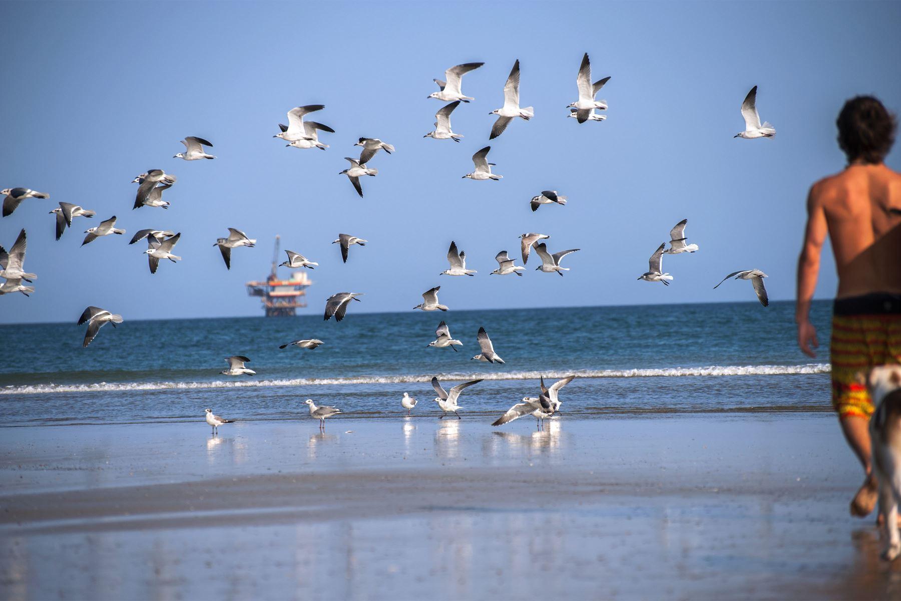 Playa Lobitos en Talara. Foto: Difusión/ PROMPERU