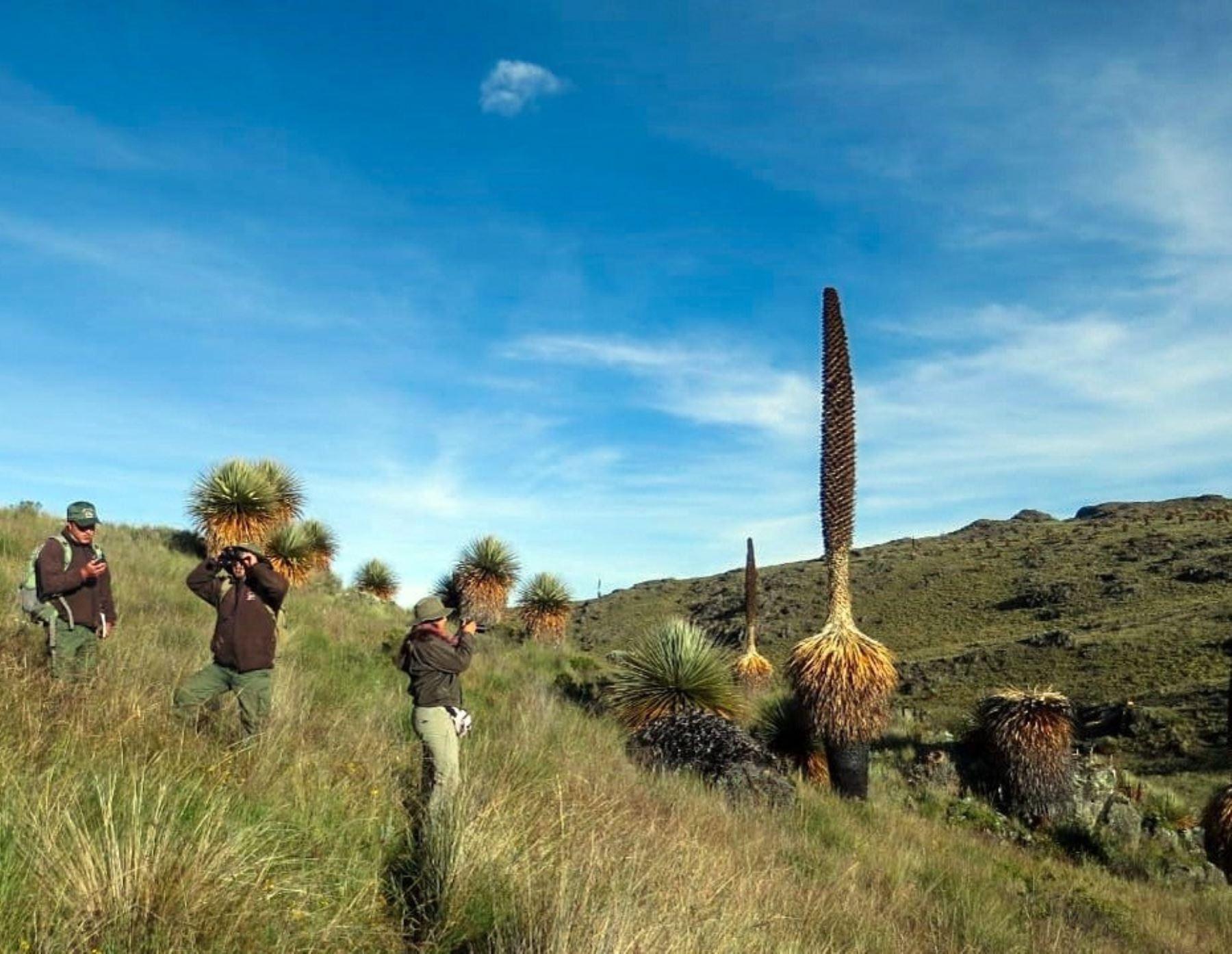 Santuario Nacional de Calipuy obtiene el sello Safe Travels y ya puede recibir visitantes