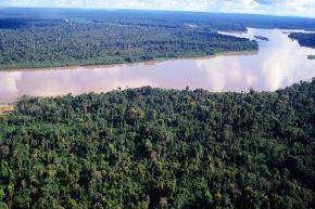 Un total de 14 millones de toneladas de Dióxido de Carbono (CO2) emitidas, equivalentes al carbono almacenado en 38,000 hectáreas de bosque amazónico, se han reportado en la herramienta Huella de Carbono Perú, implementada por el Ministerio del Ambiente. ANDINA/Difusión