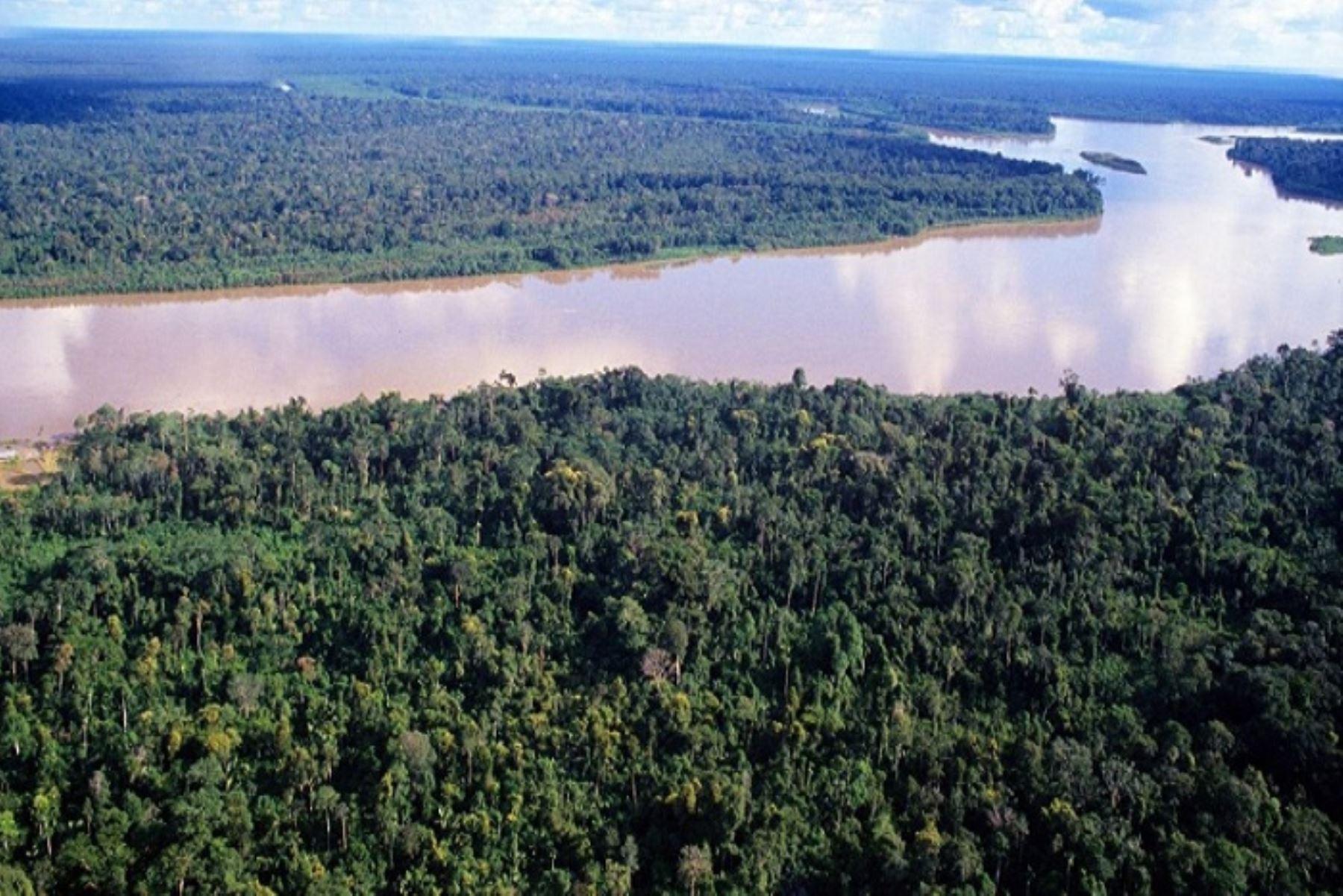 IGP: variación de sedimentos en la Amazonía pone en riesgo la pesca y agricultura