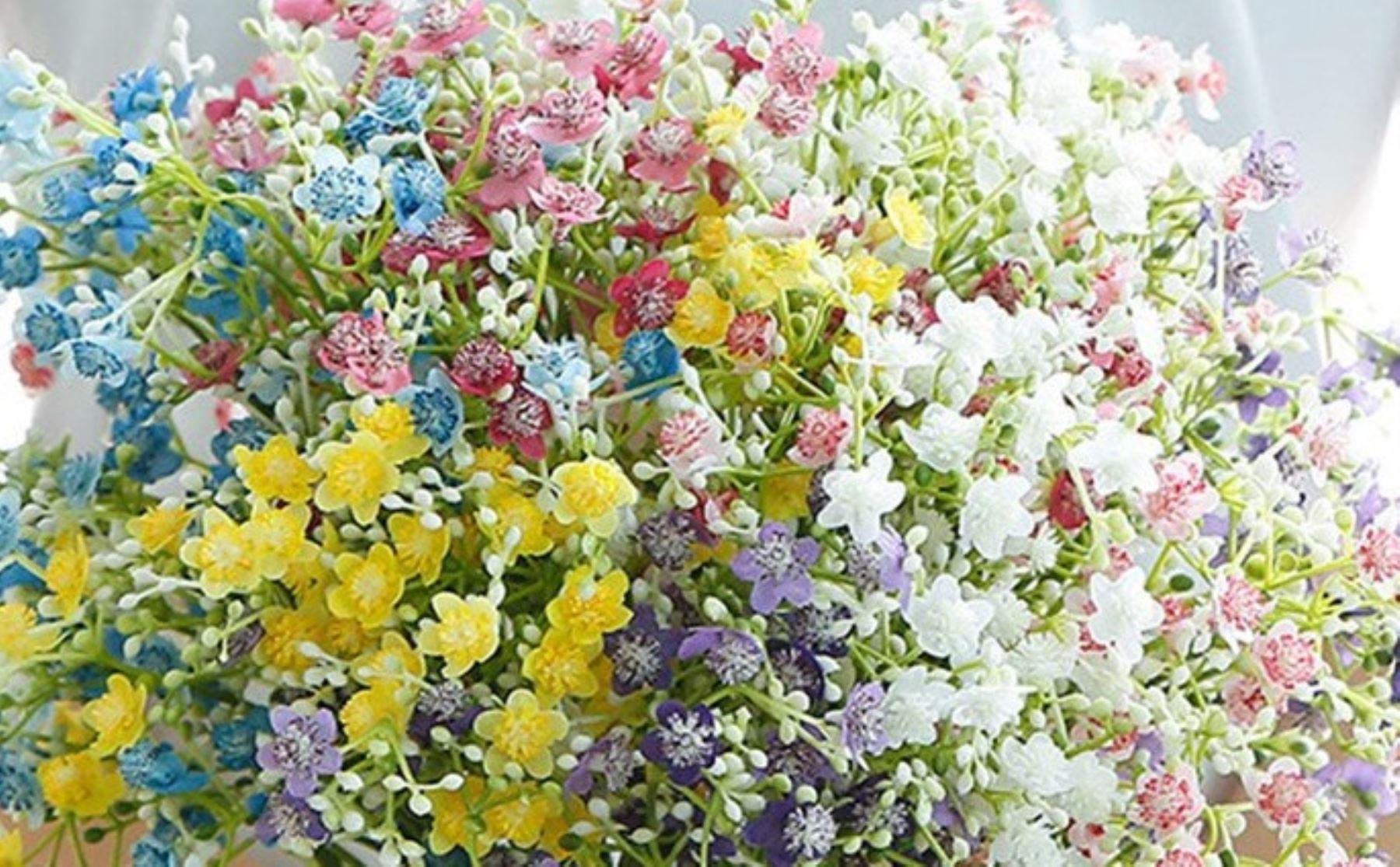 Exportaciones de flores registraron crecimiento de 38% a julio del 2021