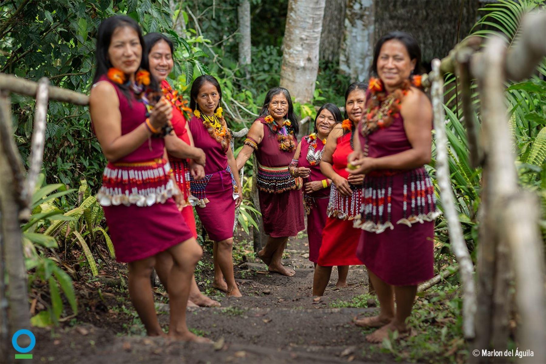 Resaltan logros alcanzados por emprendimientos sostenibles de comunidades nativas