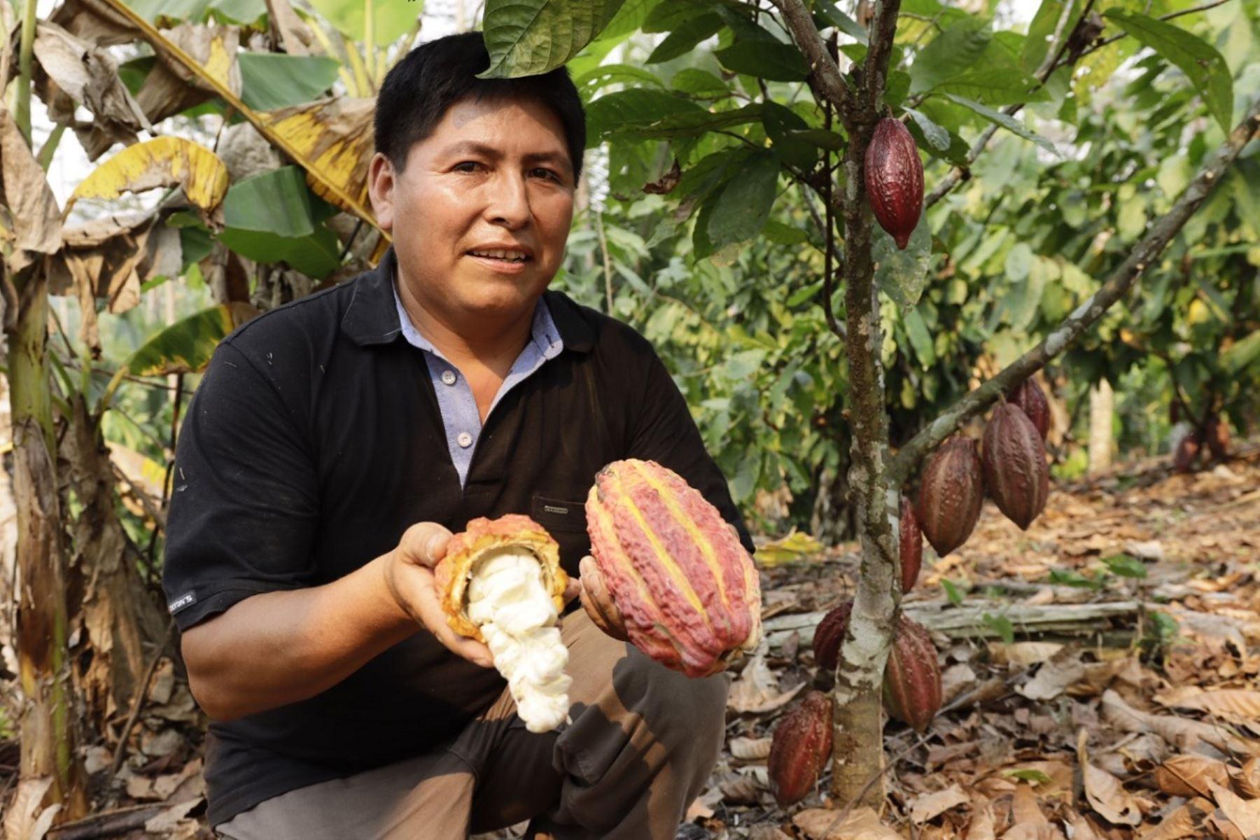 Sector agropecuario registra expansión de 6% en agosto