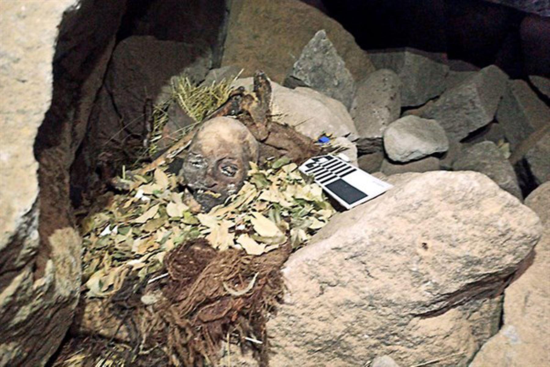 Pasco: hallan momias de sacrificios prehispánicos hechos como pagos en Bosque de Huayllay