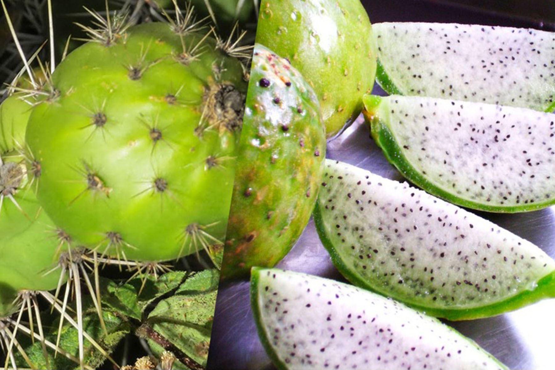 Sanky, el fruto andino rico en vitamina C y potasio que muy pocos conocen