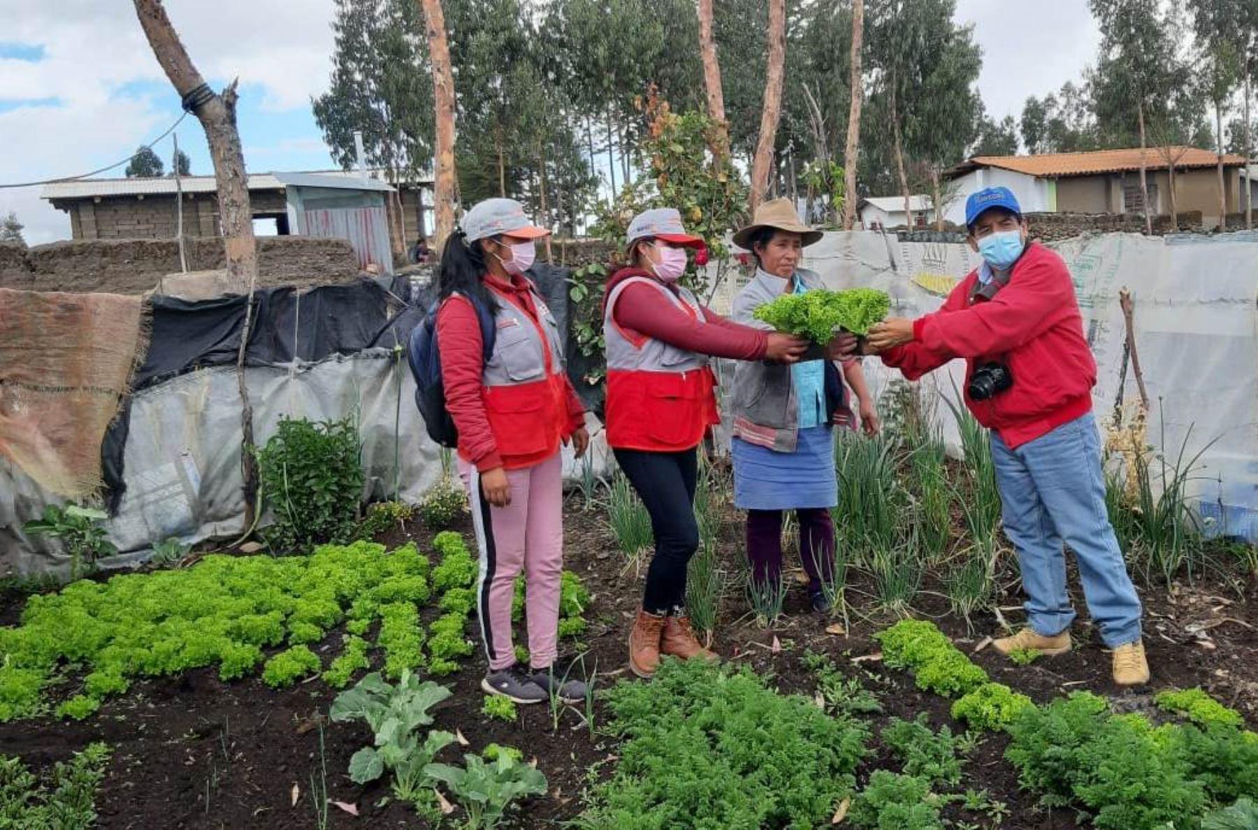 La Libertad: fortalecen capacidades productivas en Carabamba con proyecto Haku Wiña Exprés