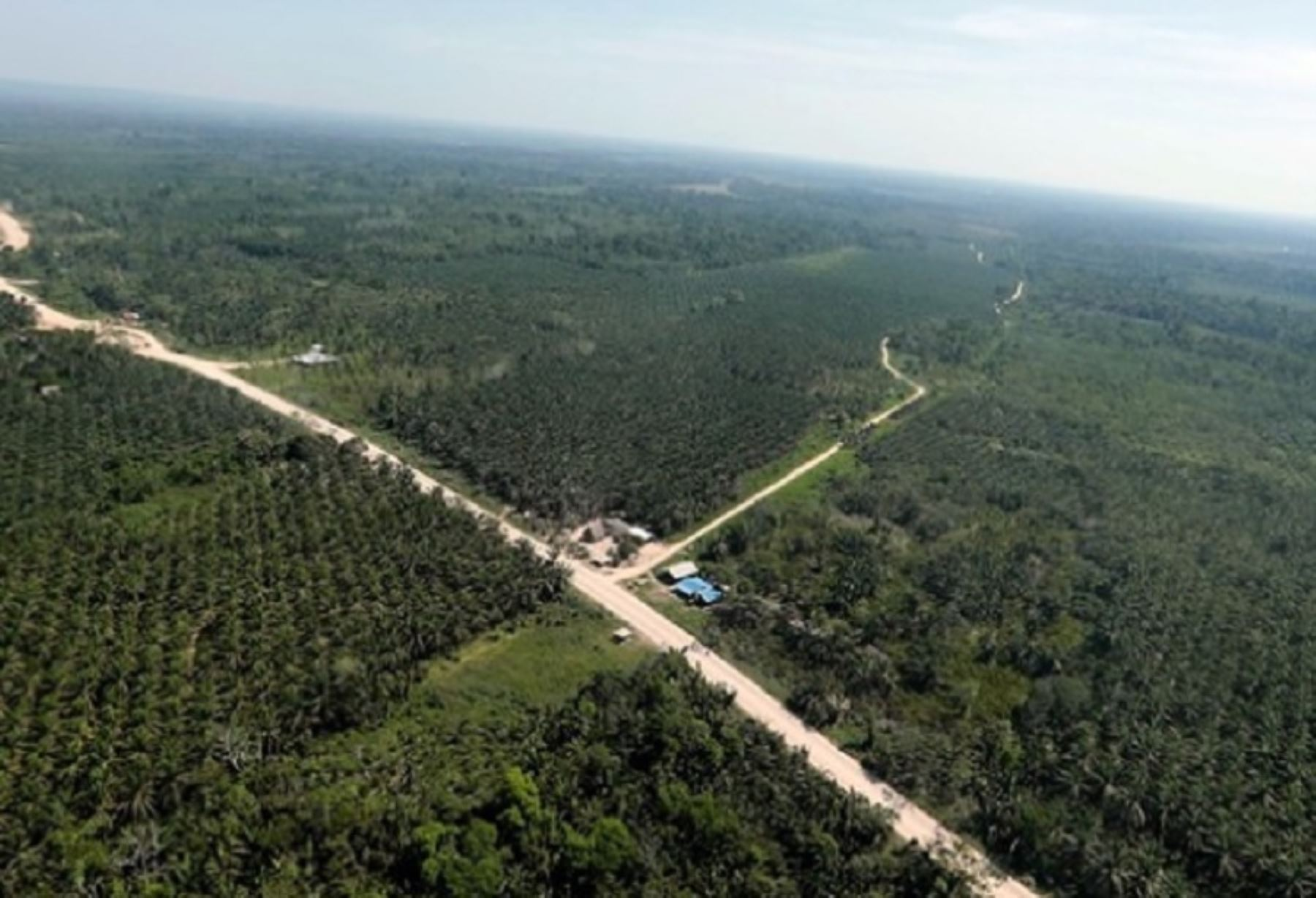 Ucayali: autoridades realizan inspección aérea de carretera Curimaná-Neshuya