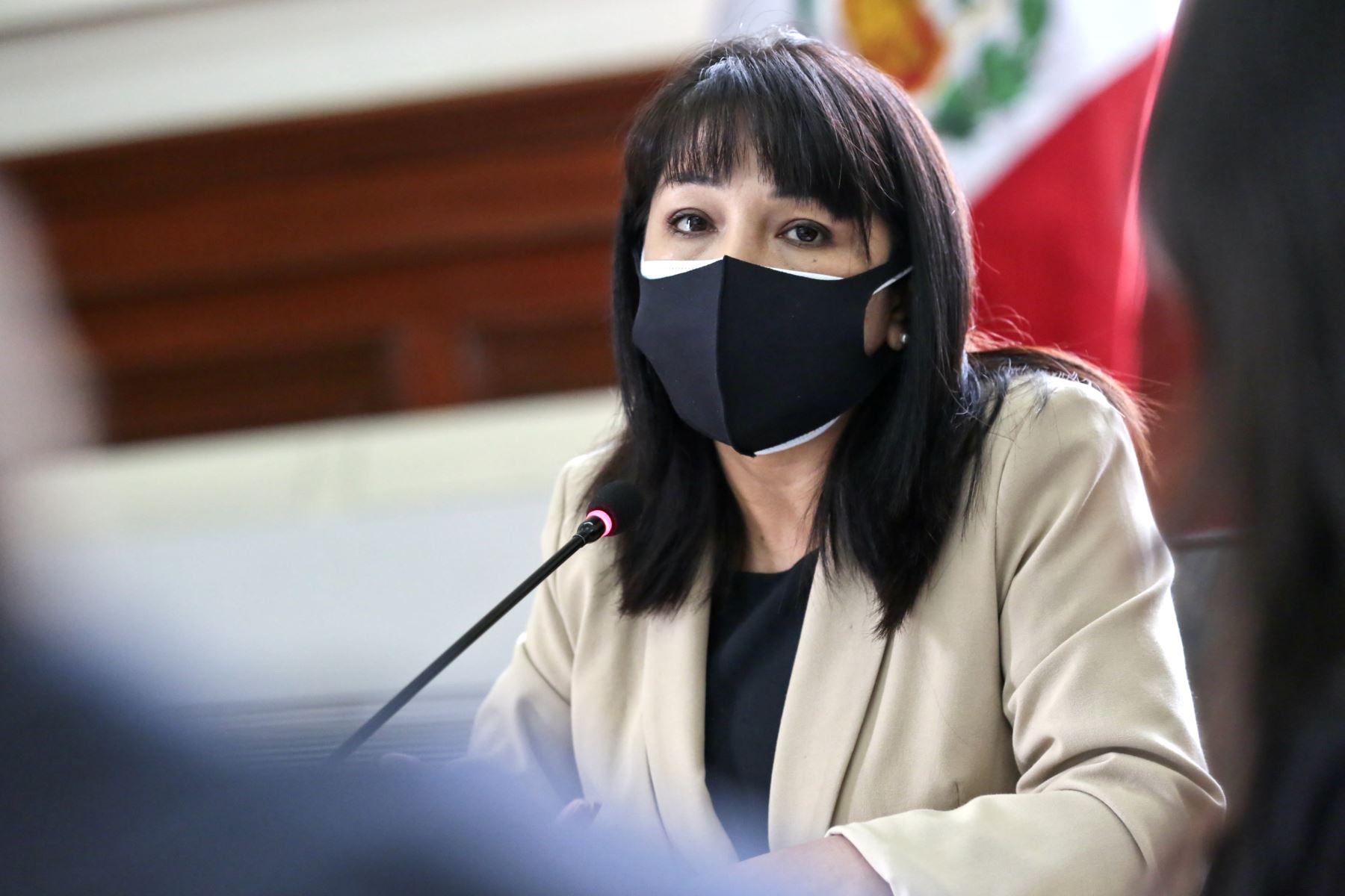 Mirtha Vásquez sustentó presupuesto del sector ante comisión del Congreso