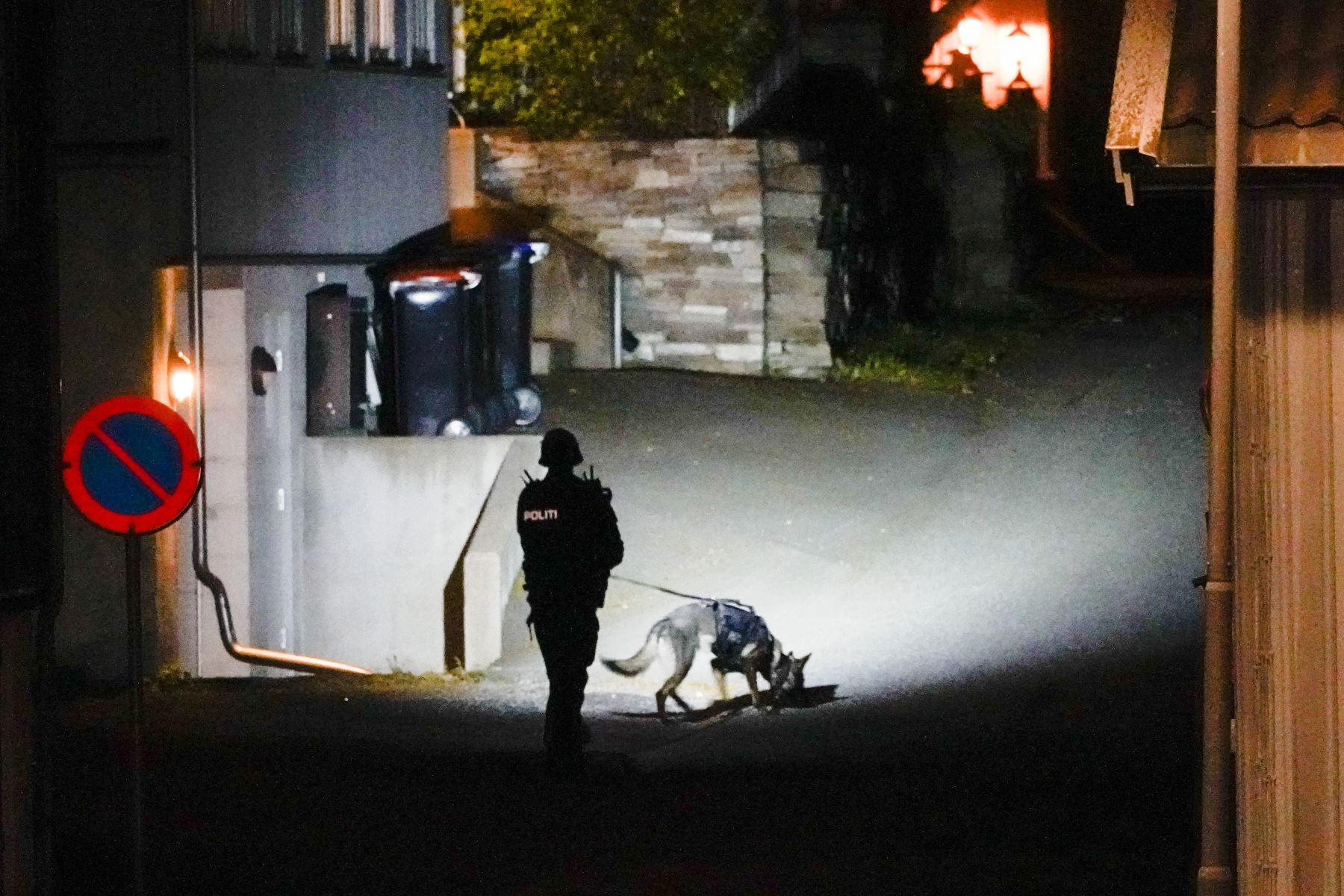 Hombre armado con un arco y flechas mata al menos a 5 personas en Noruega