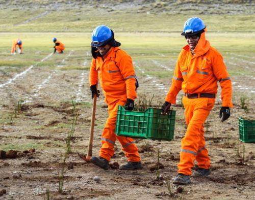 Las labores de remediación de pasivos ambientales mineros a cargo del Estado generan una rentabilidad social a más de 237,000 peruanos, destacó la empresa Activos Mineros. Foto: ANDINA/difusión.