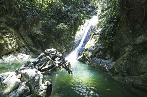 Tingo María: disfrute de una bella y verde aventura en este paraíso de Huánuco