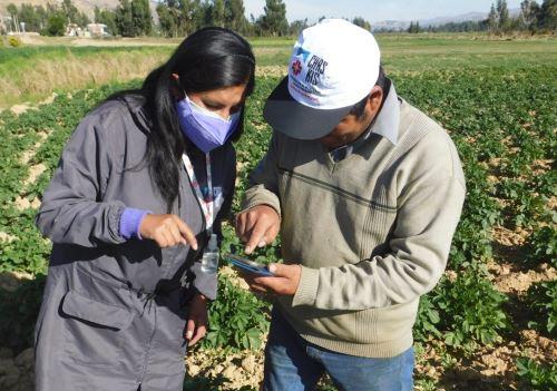 Junín: agricultores logran mejores precios para sus productos con apoyo del Midagri