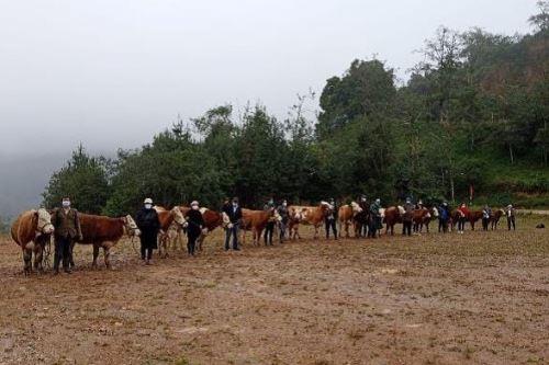 Productores agropecuarios apoyados por Agro Rural. Foto: cortesía.