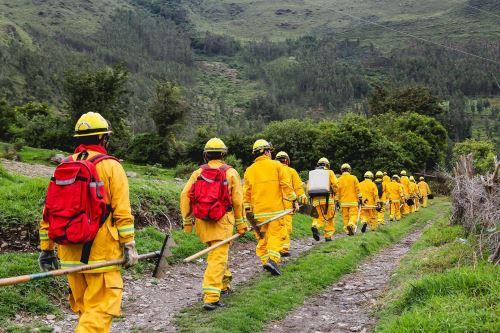 Reducen al 50% efectos de incendios forestales