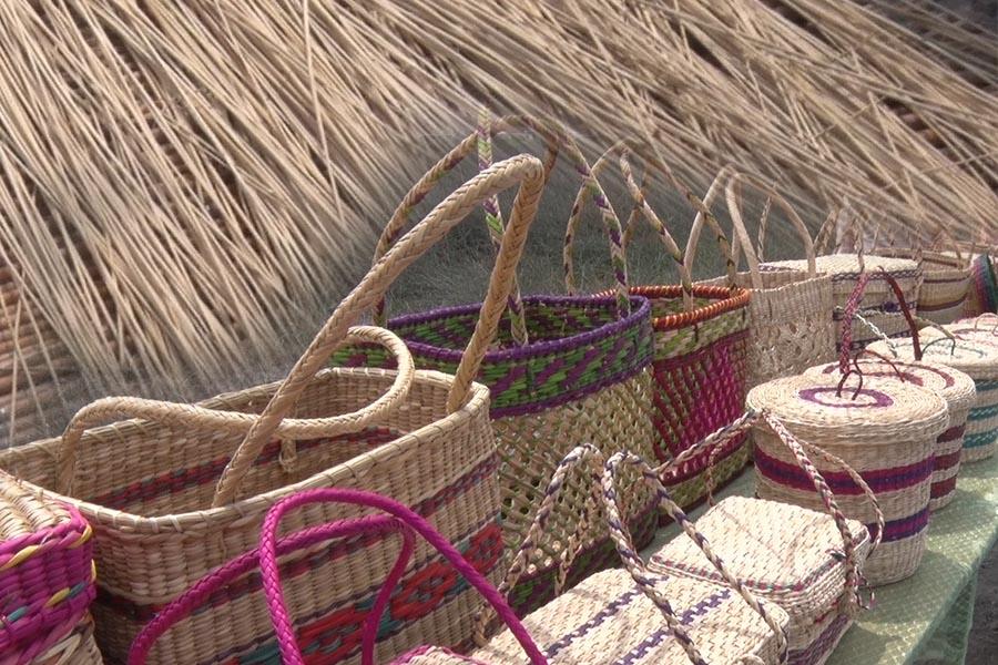 Ecosostenible: tejen artesanía con junco de humedales
