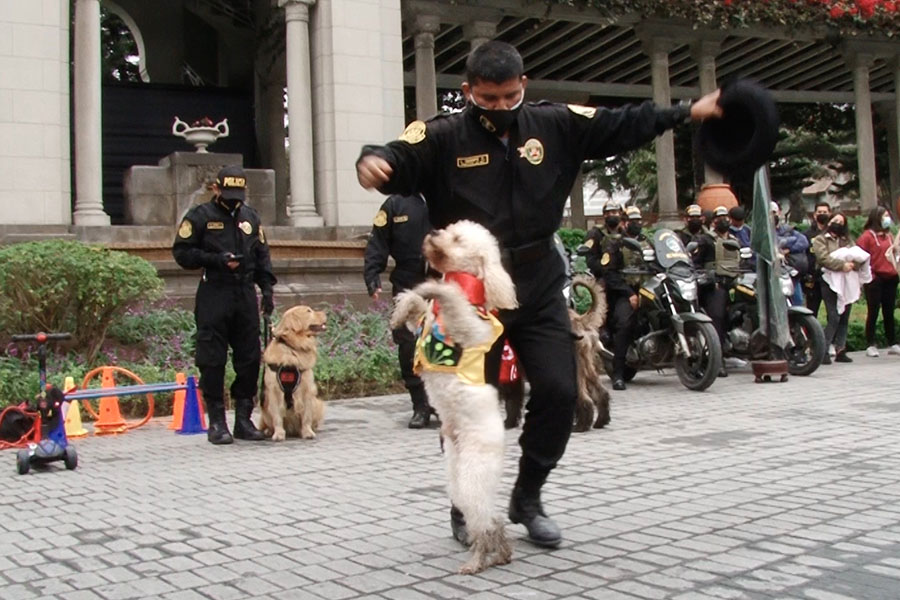 Perro bailarín: sensación de la Policía Canina
