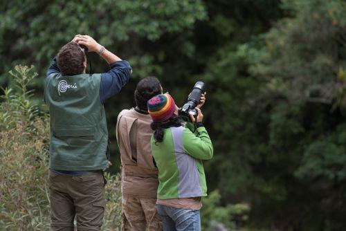 Expertos en el tema de observación de aves otorgaron la distinción al Perú.