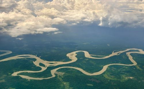 Deforestación causó la pérdida de más de 23,000 hectáreas de bosques en la Amazonía.