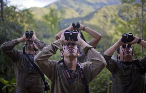 Tambopata es uno de los lugares privilegiados para la observación de aves.
